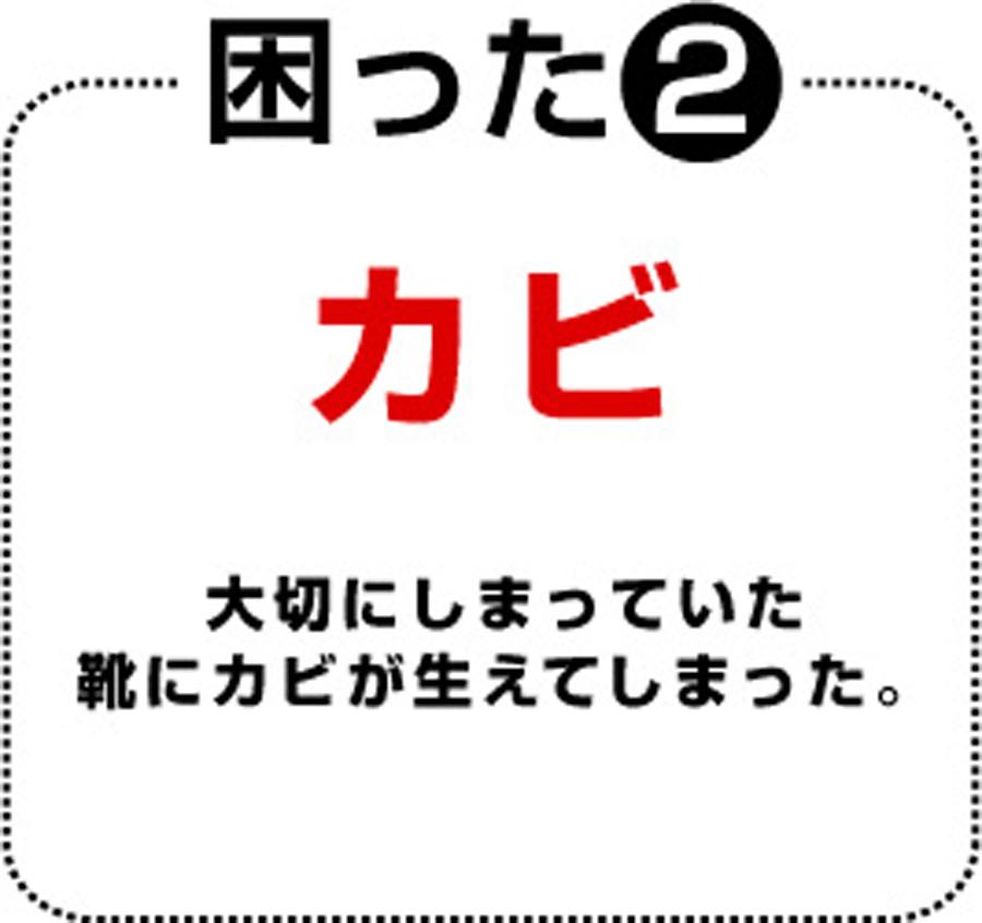 f:id:plusone-akashi:20210514090315j:plain
