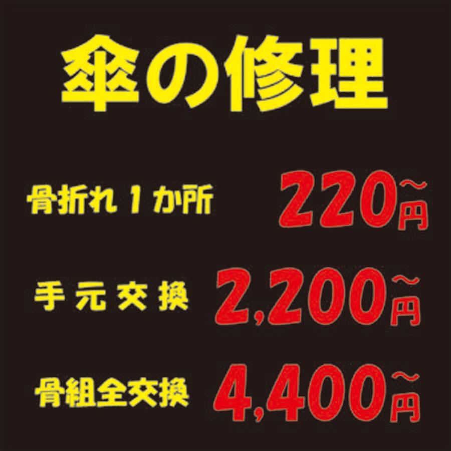 f:id:plusone-akashi:20210517104245j:plain