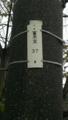 [箞木][ウツボギ][稀少地名漢字]箞木電柱