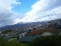 この青い空、みどり