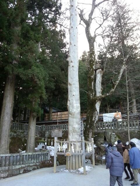 御柱!ってことで今年の初詣は諏訪大社です。