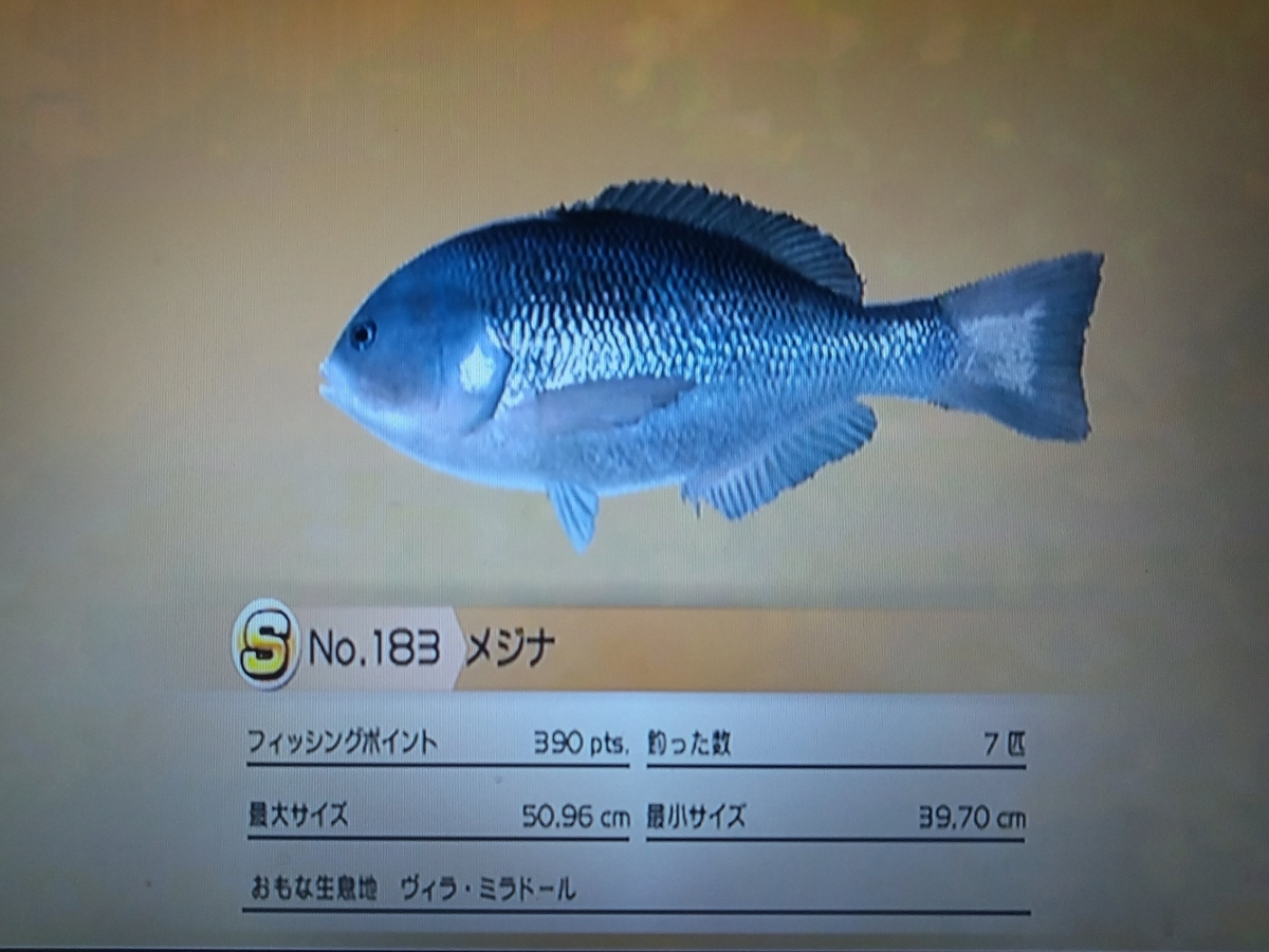 f:id:pocchikun0304:20210131125843j:plain