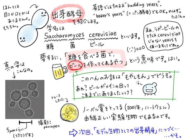 01_090505_紹介