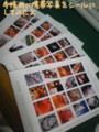 携帯写真をシールにしました。ほぼ日手帳用