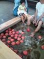 南田温泉、りんごの足湯