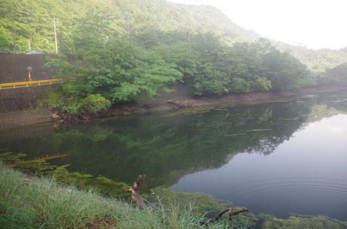 f:id:pochihiko_inunosuke:20160628011925j:plain