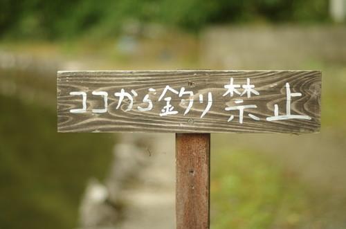 f:id:pochihiko_inunosuke:20201012203222j:plain
