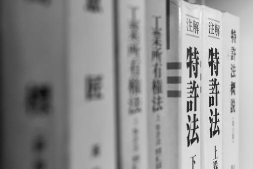 f:id:pochihiko_inunosuke:20210202133514p:plain