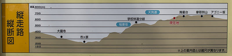f:id:pochinokotodama:20210326155250p:plain