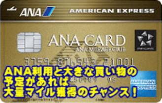 ANAAmex-gol-card