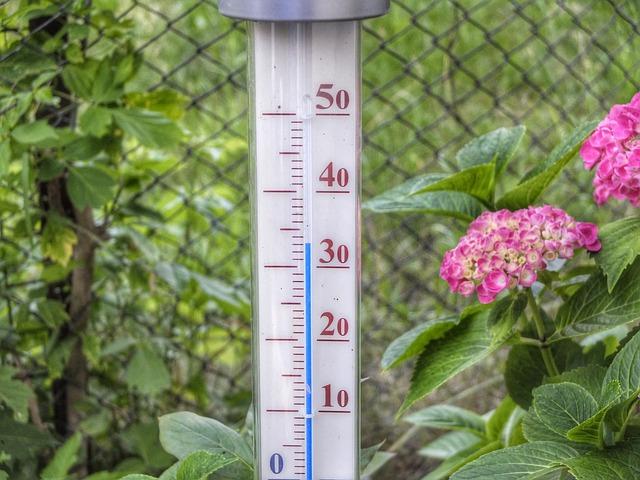猛暑による熱中症に注意