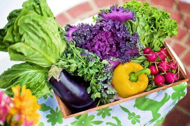 健康な食物のイメージ