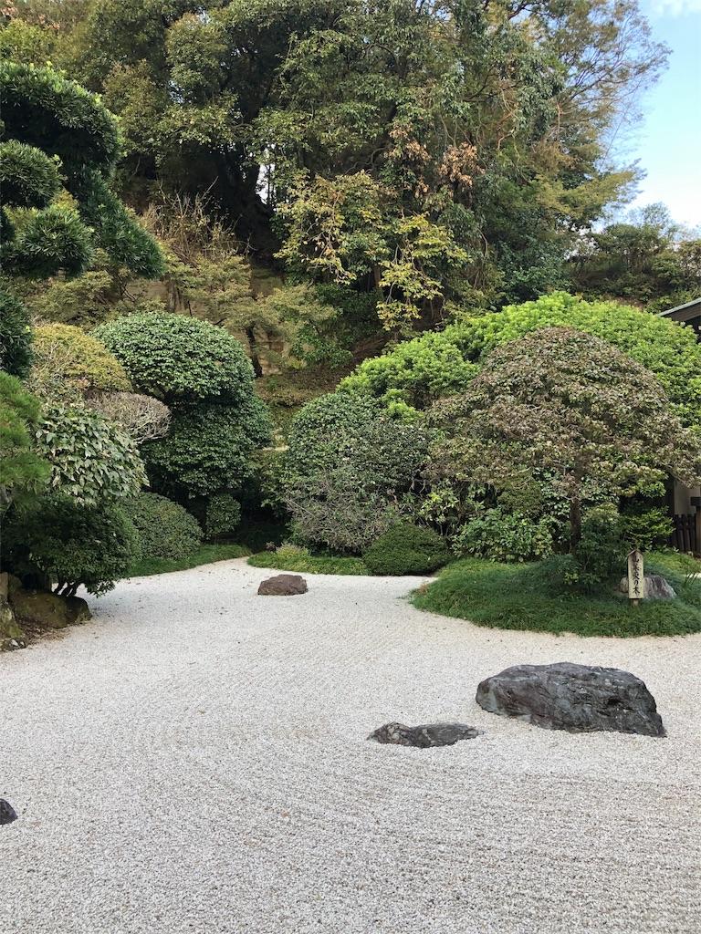 報国寺の庭