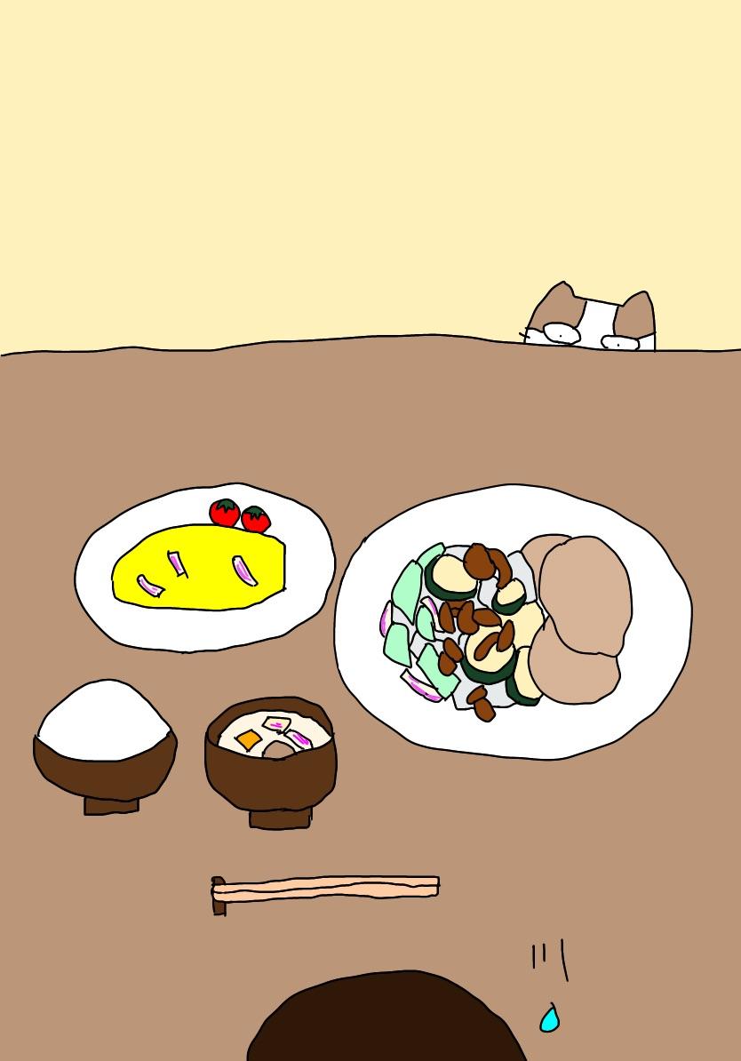 夕食の風景とポジと猫