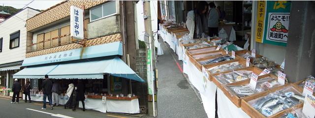 f:id:pokefuku2:20100112211849j:image