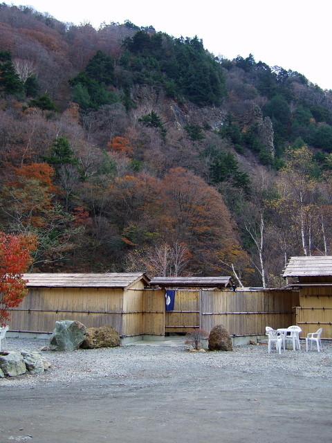 f:id:pokefuku2:20101105141322j:image