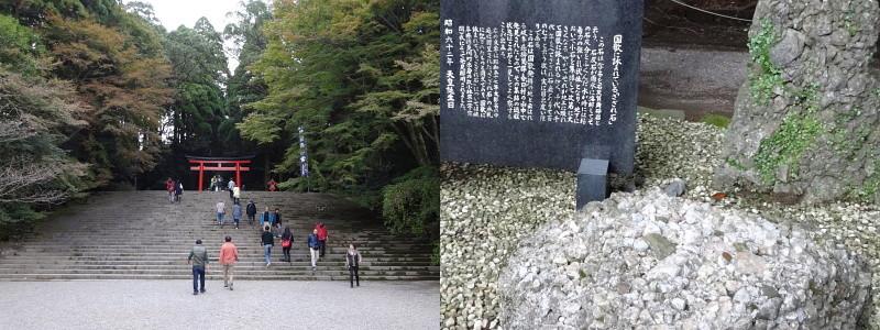 f:id:pokefuku2:20160102090122j:image
