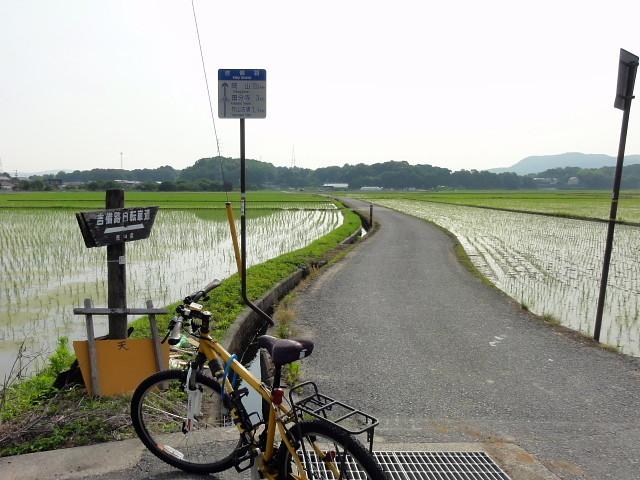 f:id:pokefuku2:20170624080434j:image