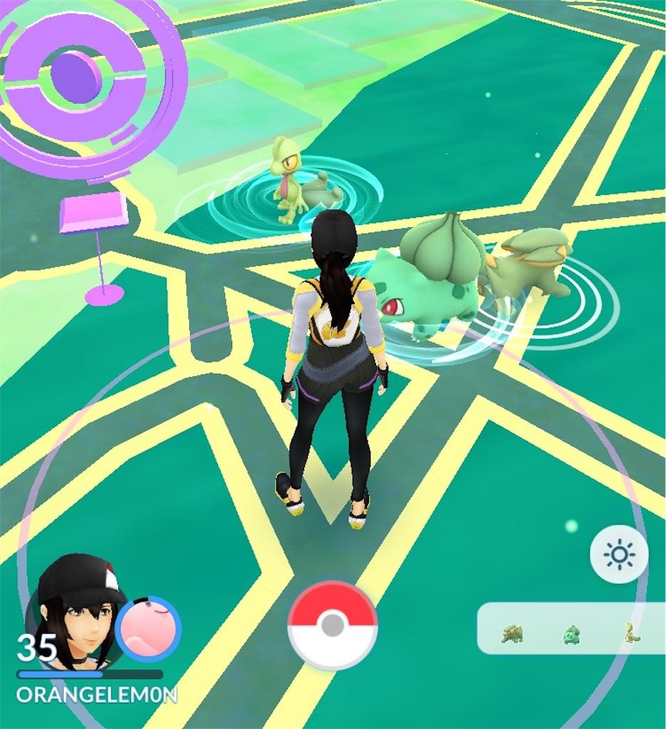 f:id:pokemonlemon:20180404110547j:image