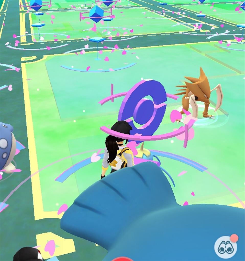 f:id:pokemonlemon:20180619150544j:image