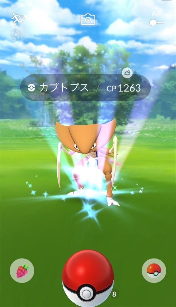 f:id:pokemonlemon:20180619150557j:image