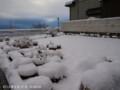 [雪景色]2012/02/17