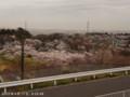[桜]2012/04/17