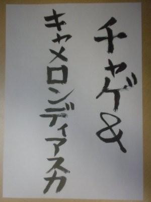 f:id:pokkuriboy:20100327203433j:image