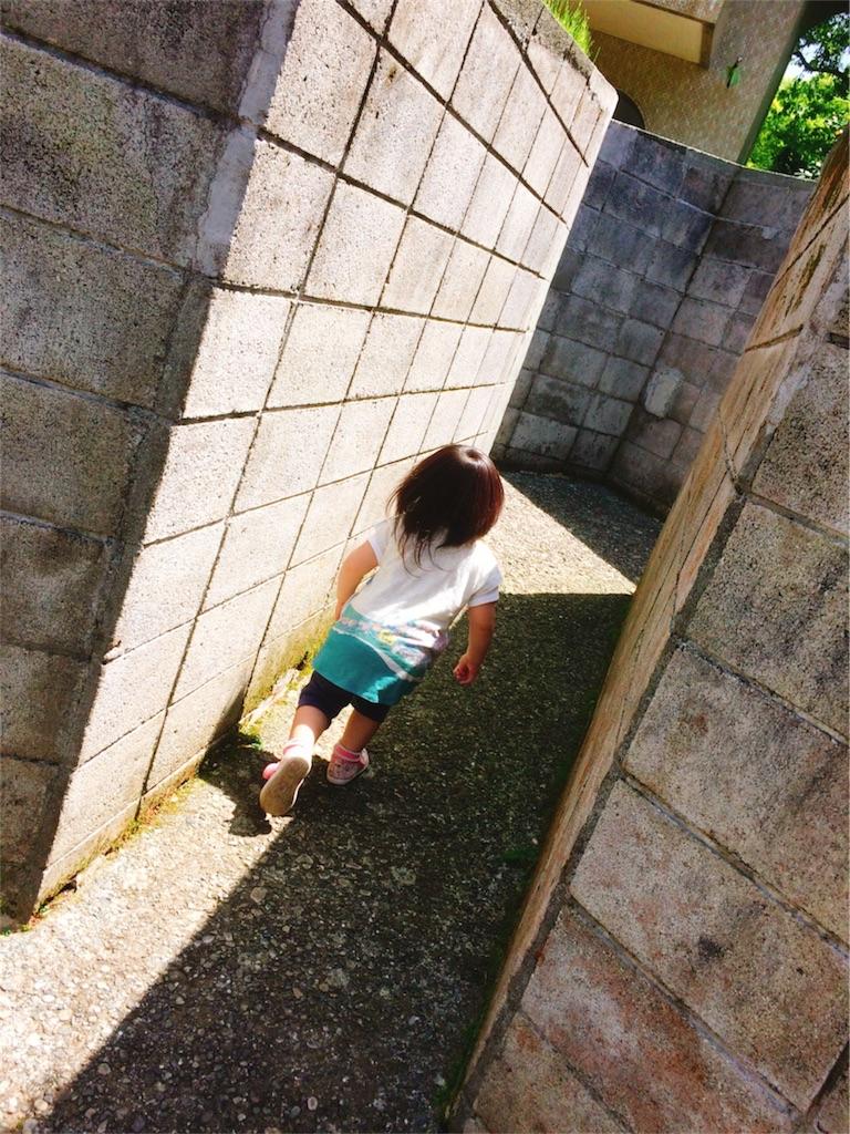 f:id:poko-nezu-koro628207:20180831105315j:image