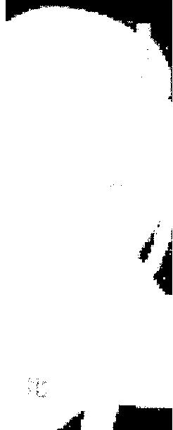 f:id:pokonan:20170819025813p:plain