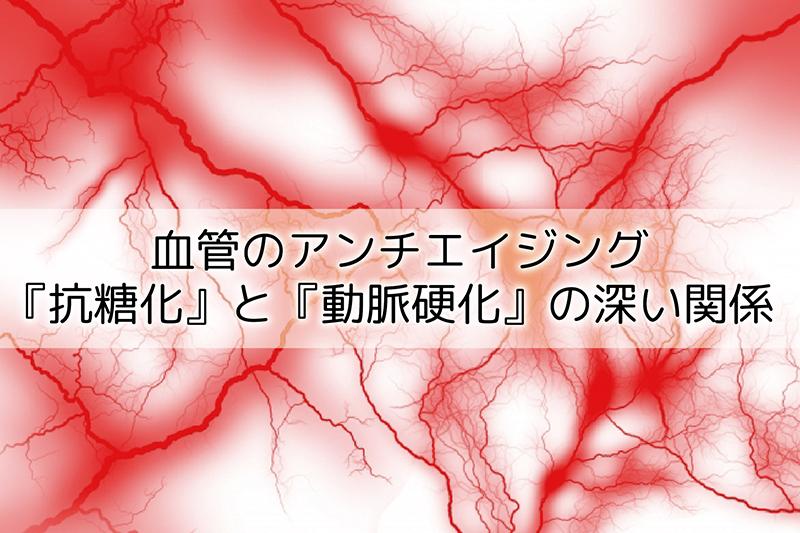 血管のアンチエイジング『抗糖化』と『動脈硬化』の深い関係