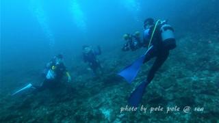 f:id:polepole-at-sea:20160618211737j:plain
