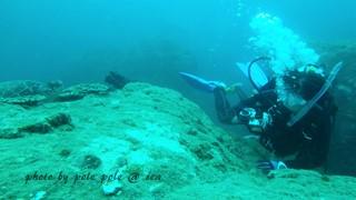 f:id:polepole-at-sea:20160716231537j:plain