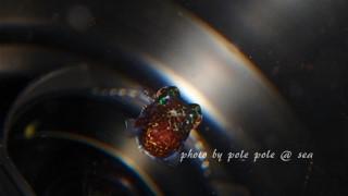 f:id:polepole-at-sea:20170614232342j:plain