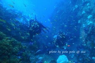 f:id:polepole-at-sea:20170618233818j:plain