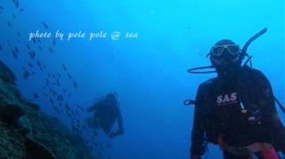 f:id:polepole-at-sea:20170618233846j:plain