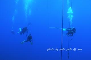 f:id:polepole-at-sea:20170727235757j:plain