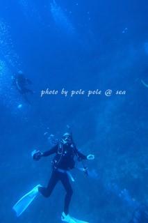 f:id:polepole-at-sea:20170829190042j:plain