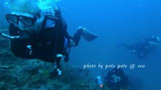 f:id:polepole-at-sea:20170902215611j:plain