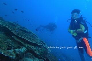 f:id:polepole-at-sea:20170902215734j:plain
