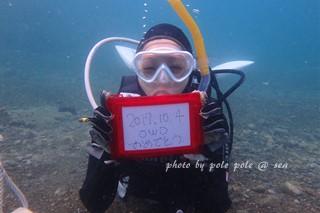 f:id:polepole-at-sea:20171005065605j:plain