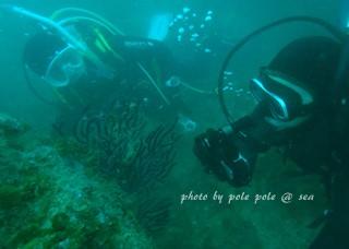 f:id:polepole-at-sea:20171025221958j:plain