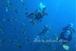 f:id:polepole-at-sea:20180722204302j:plain