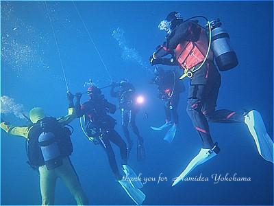 f:id:polepole-at-sea:20190211142916j:plain