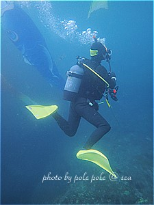 f:id:polepole-at-sea:20190430184017j:plain