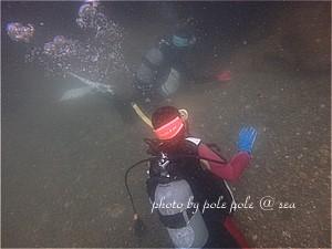 f:id:polepole-at-sea:20190901223226j:plain