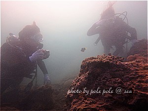 f:id:polepole-at-sea:20191026222836j:plain