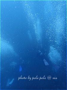 f:id:polepole-at-sea:20191116193203j:plain