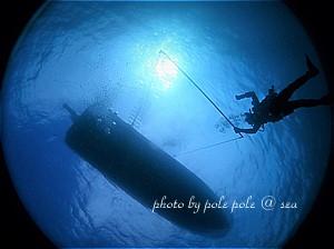 f:id:polepole-at-sea:20191123221615j:plain