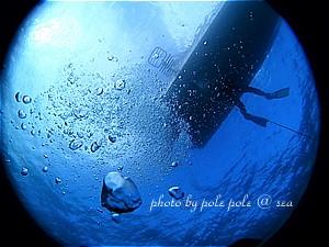 f:id:polepole-at-sea:20191123222306j:plain